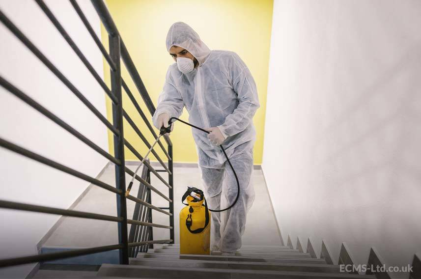 Disinfecting Stairs