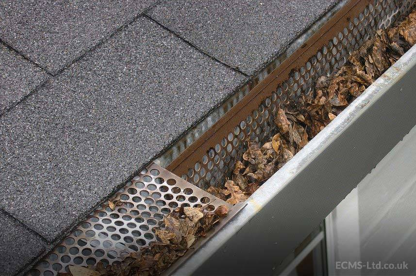 Gutters Filled with Debris